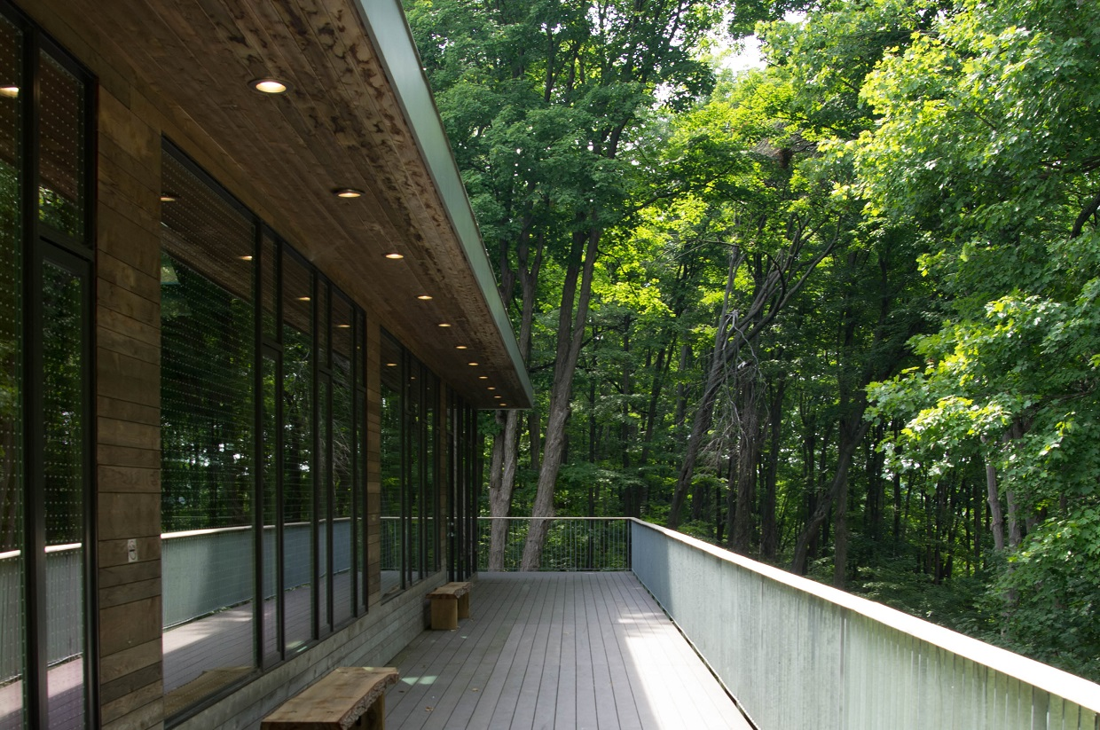 balcony of Forest Gallery at Kortright Centre