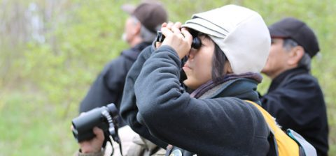 bird watcher with binoculars