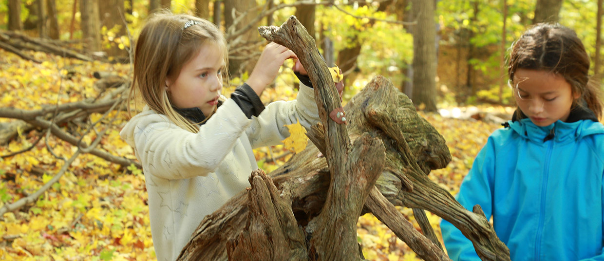 pre-teen girls take part in education program at Kortright Centre