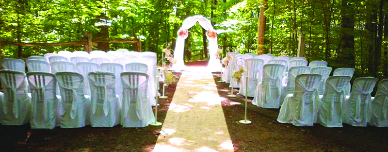 wedding setup on the forest path at Kortright Centre