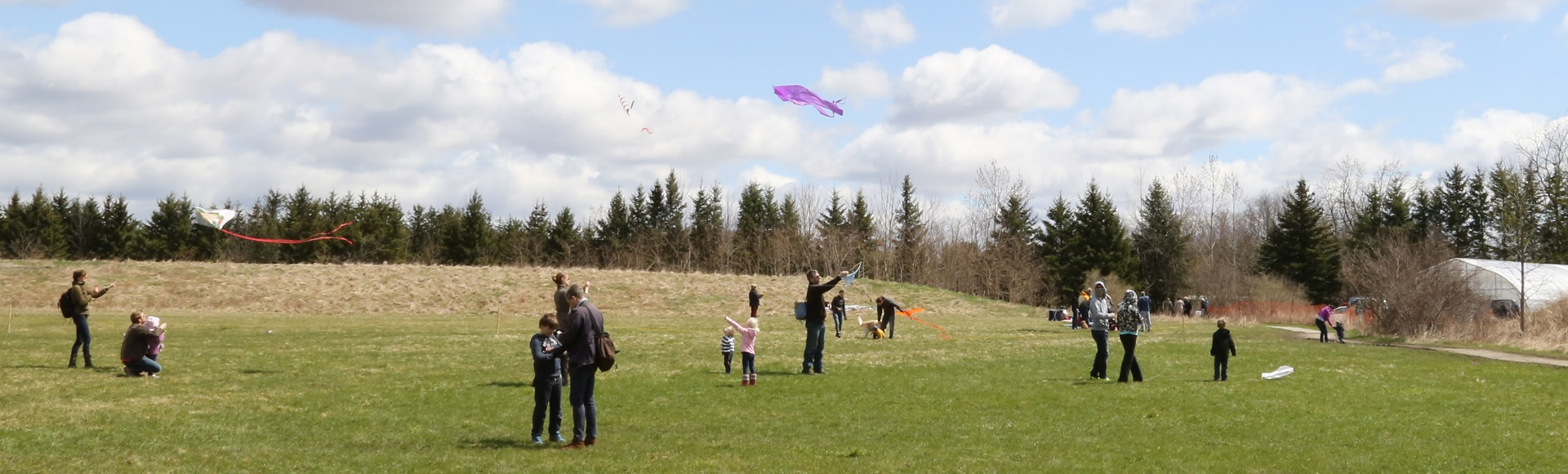 Four Winds Kite Festival at Kortright Centre