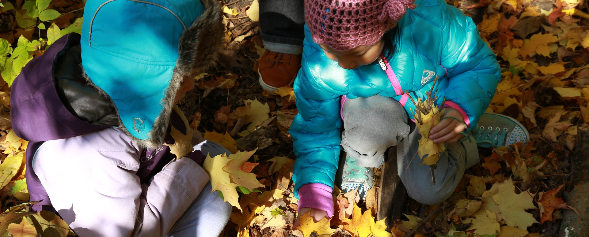 children at Kortright Nature School