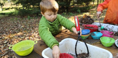 pre-school boy takes part in outdoor education program at Kortright Centre