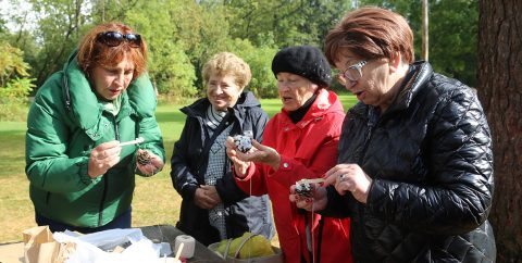 seniors take part in a crafting workshop at Kortright Centre