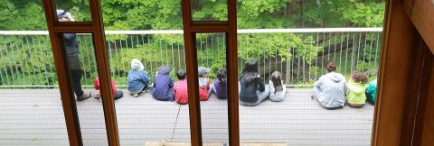 youngsters hone their nature observation skills at Kortright spy camp