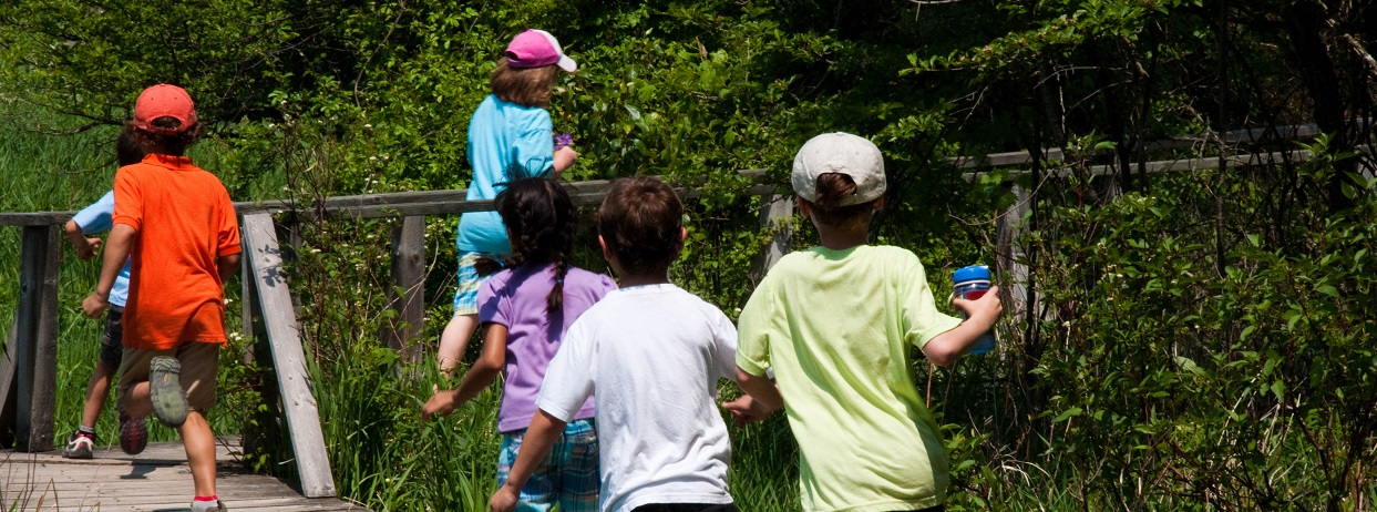 kids run on boardwalk at Kortright Centre nature day camp