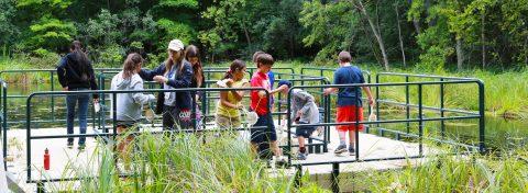 kids explore marsh at Kortright Centre