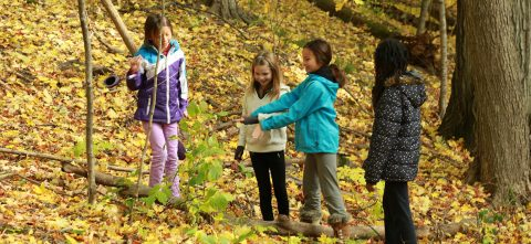 elementary school students explore forest in autumn at Kortright Centre