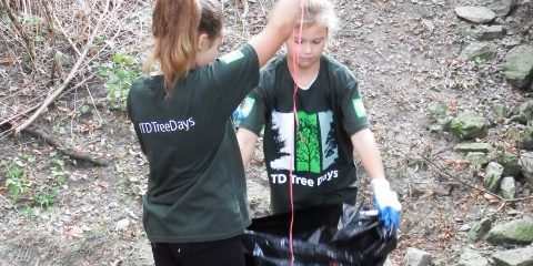 students participate in community cleanup program
