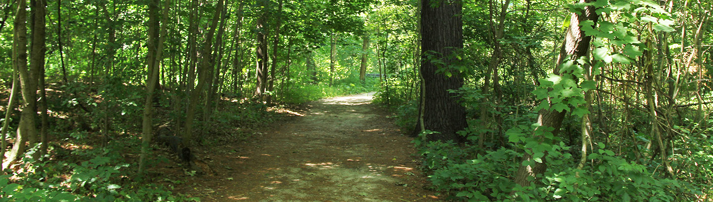 trail in woods at Kortright Centre
