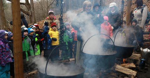 school children visit Kortright Centre maple syrup festival
