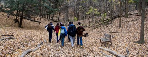 high school students explore trail at Kortright Centre