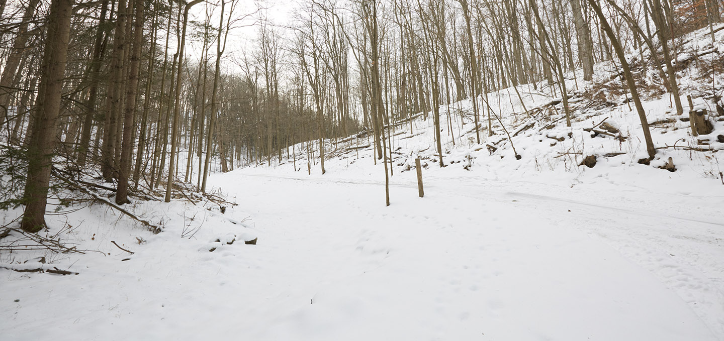 Kortright Centre trail covered in snow