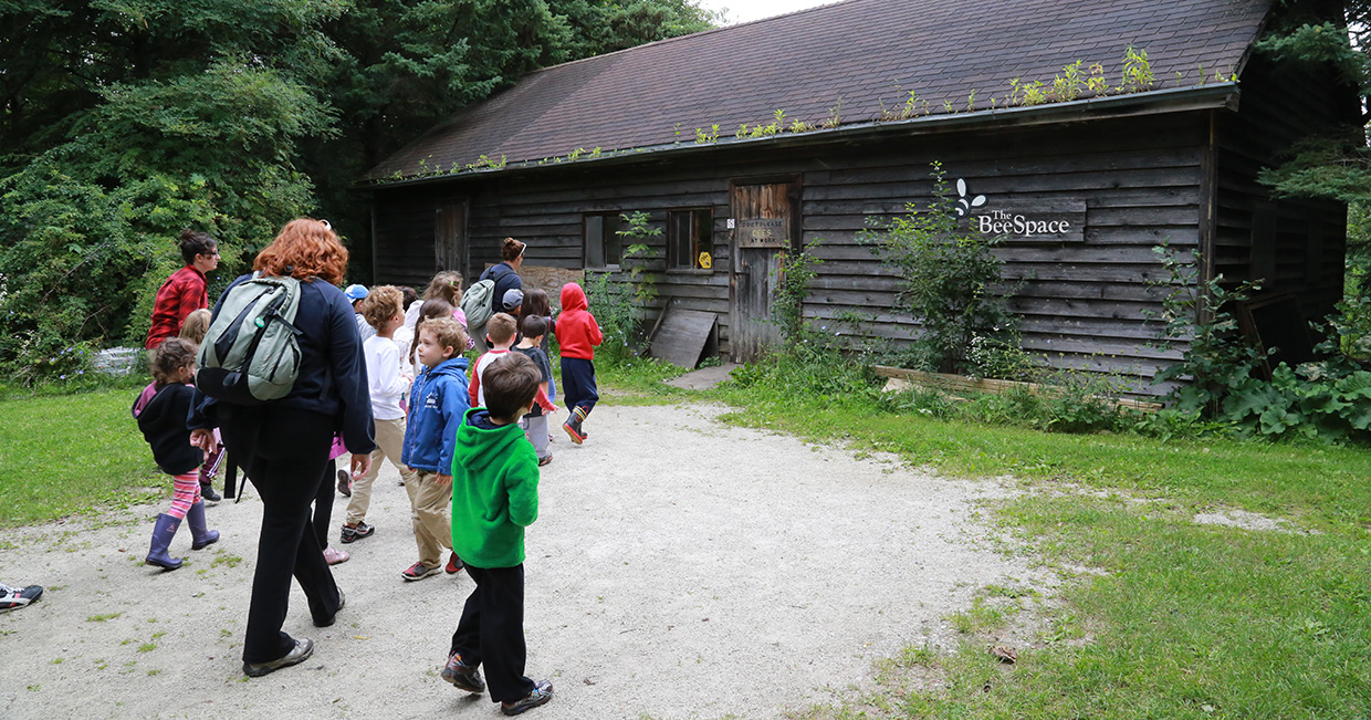 teachers and students visit Bee Space at Kortright Centre