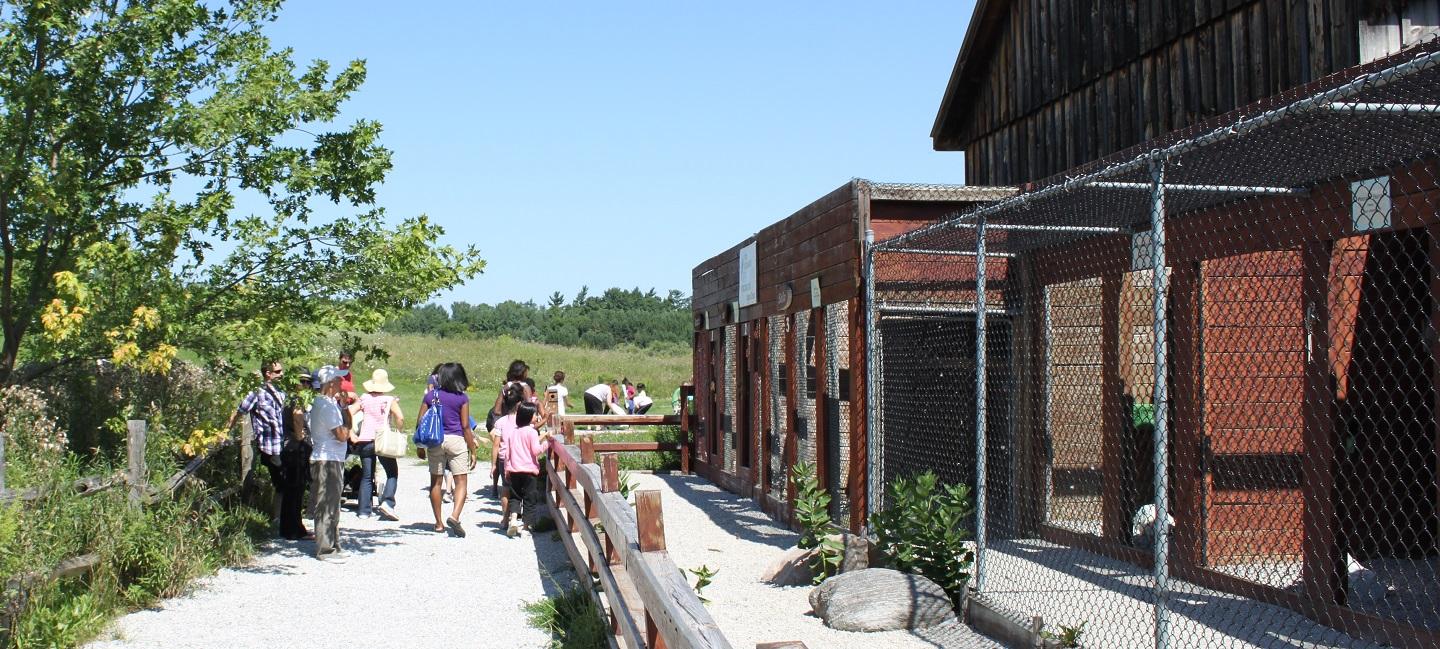 visitors tour Peregrine Barn at Kortright Centre