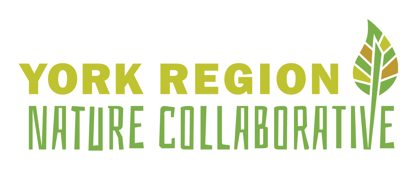 York Region Nature Collaborative logo