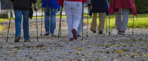 seniors pole walking session at Kortright Centre