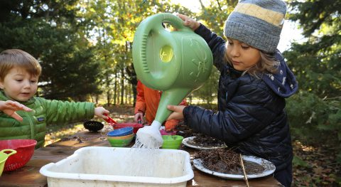 children take part in Early Years Forest School program at Kortright Centre