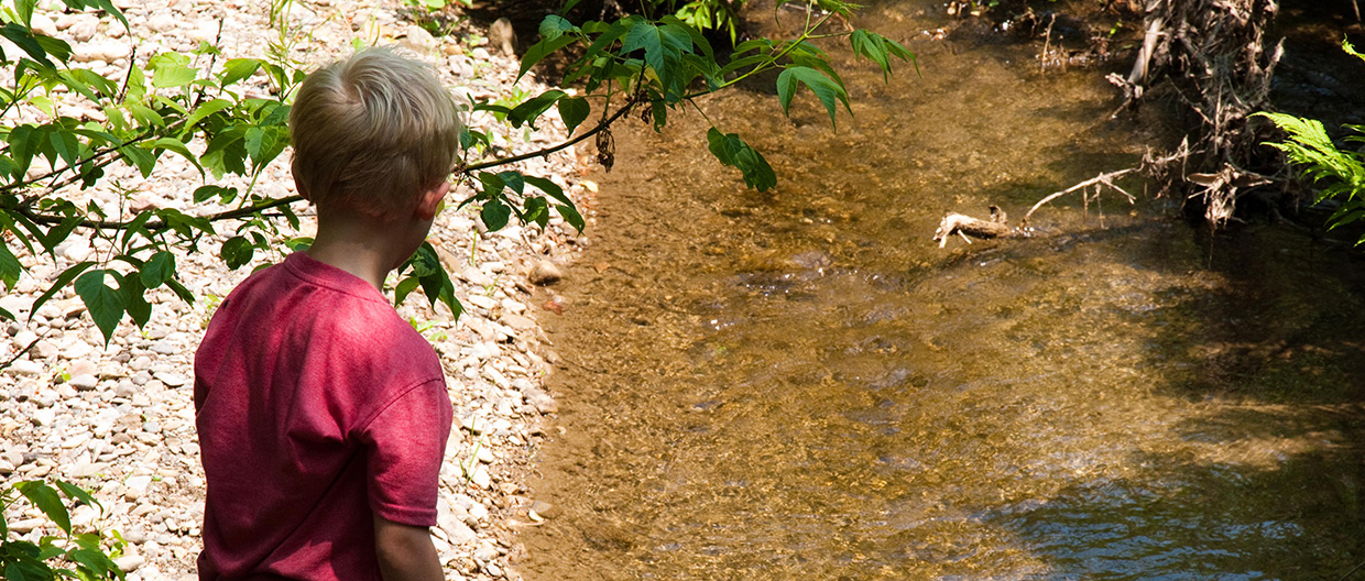 boy stands beside stream at Kortright Centre