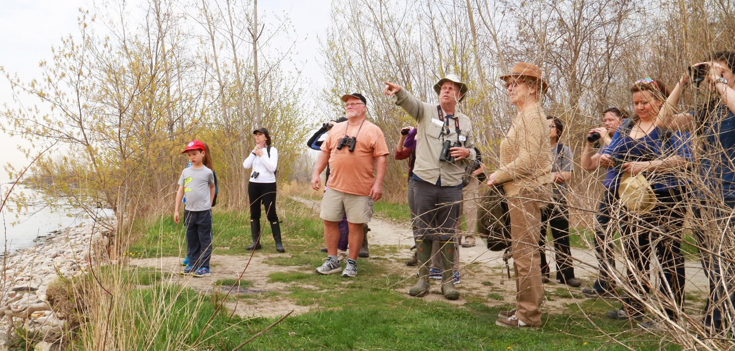 birding workshop at Tommy Thompson Park