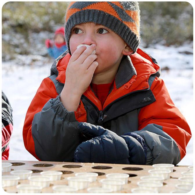 children attend Sugarbush Maple Syrup Festival at Kortright Centre
