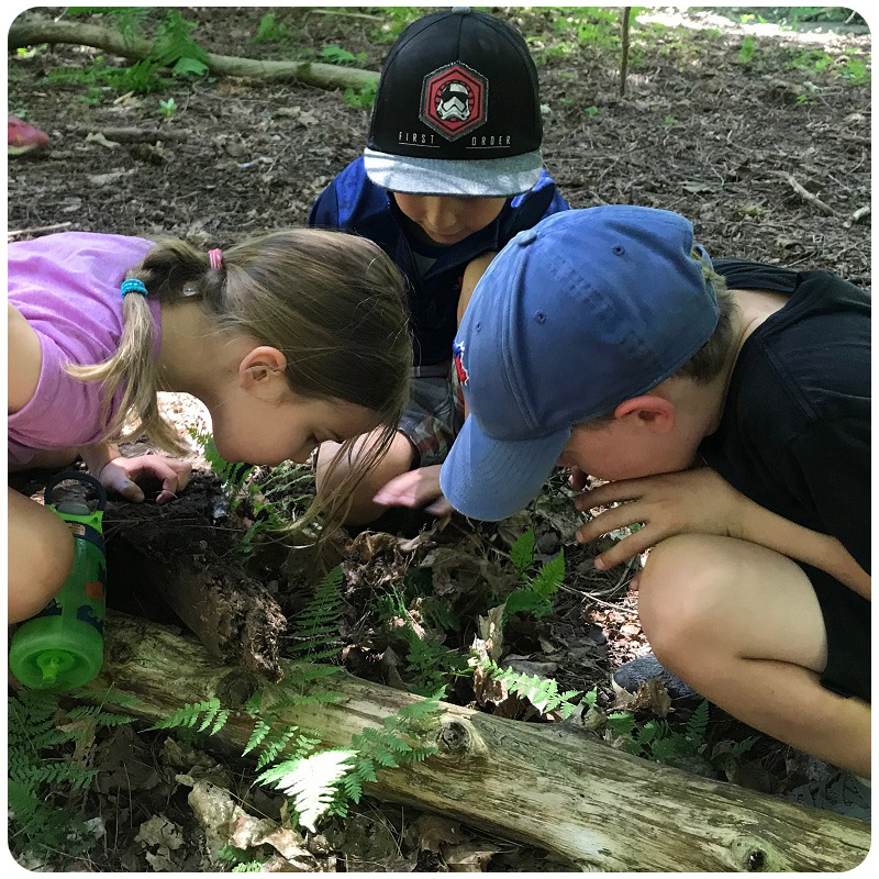 children enjoy Kortright summer Forest School at Swan Lake Outdoor Education Centre