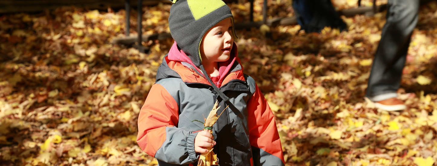 young boy at Kortright Nature School