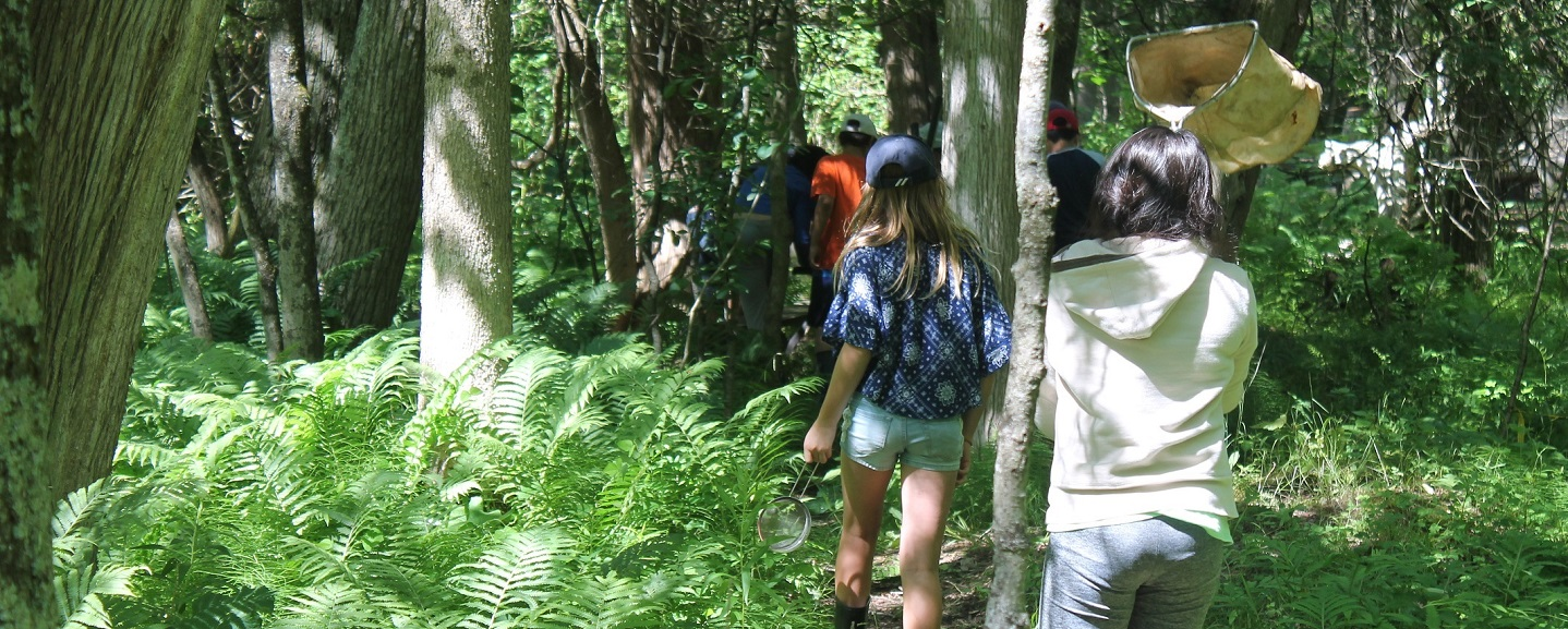 group of youngsters on forest trail at Albion Hills Field Centre