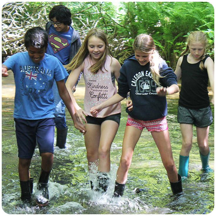 children splash in stream at Albion Hills summer overnight nature camp