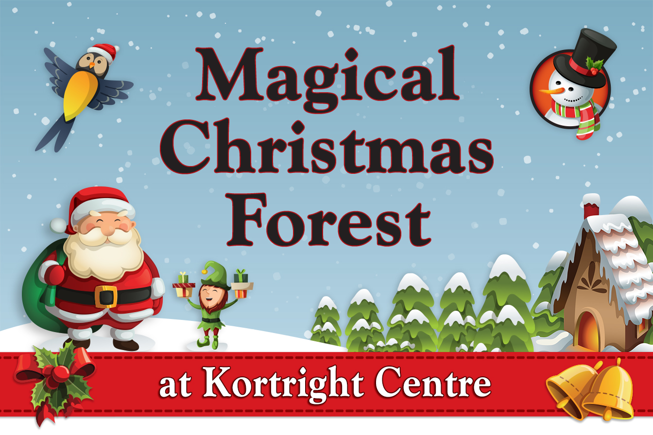 Magical Christmas Forest @ Kortright Centre for Conservation | Vaughan | Ontario | Canada