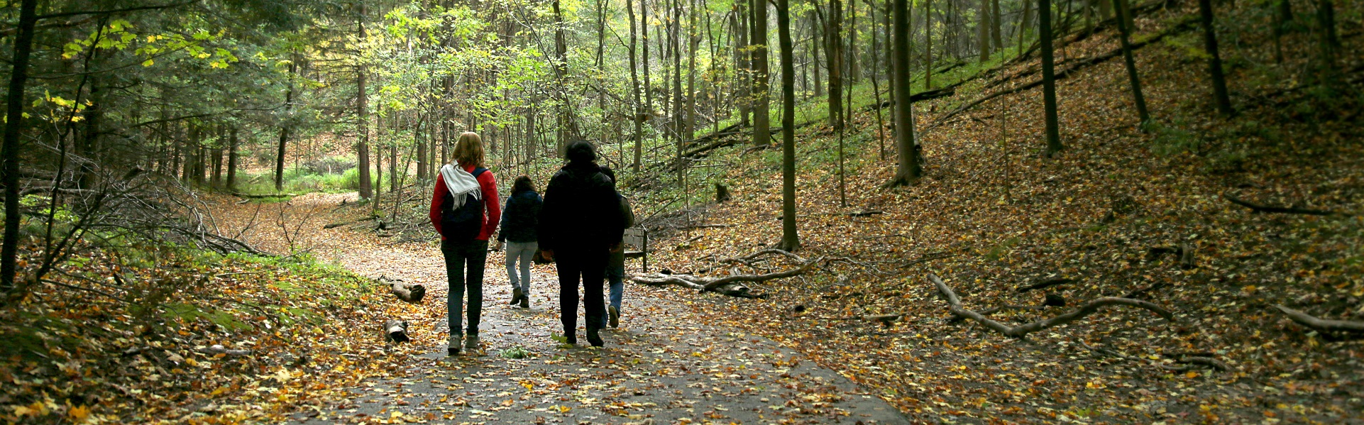 group of women explore fall trail at Kortright Centre