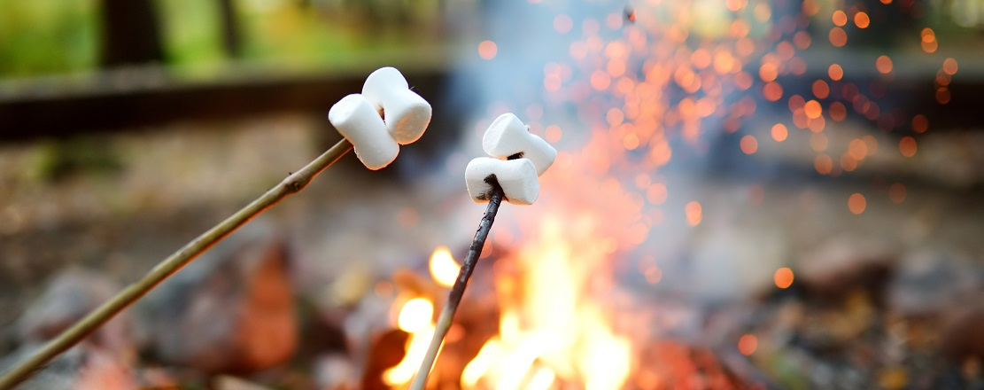 campers toast marshmallows over campfire