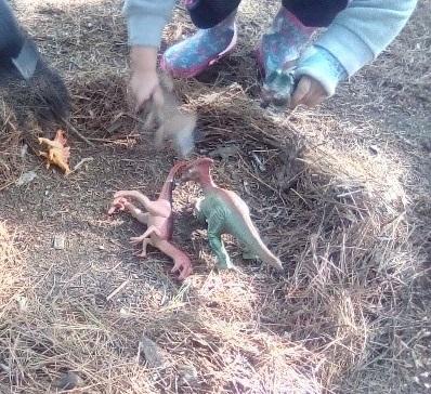 Nature School preschool students hide plastic dinosaurs in pine needles
