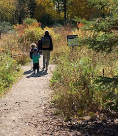preschoolers explore trail at Kortright Centre in the fall