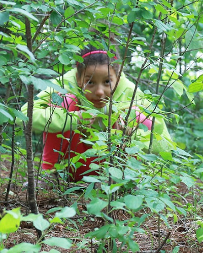 summer campers camouflage themselves in the forest as part of survival challenge game at Kortright Centre
