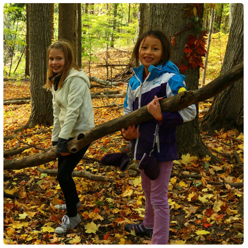 children attend PA Day Camp at Kortright Centre