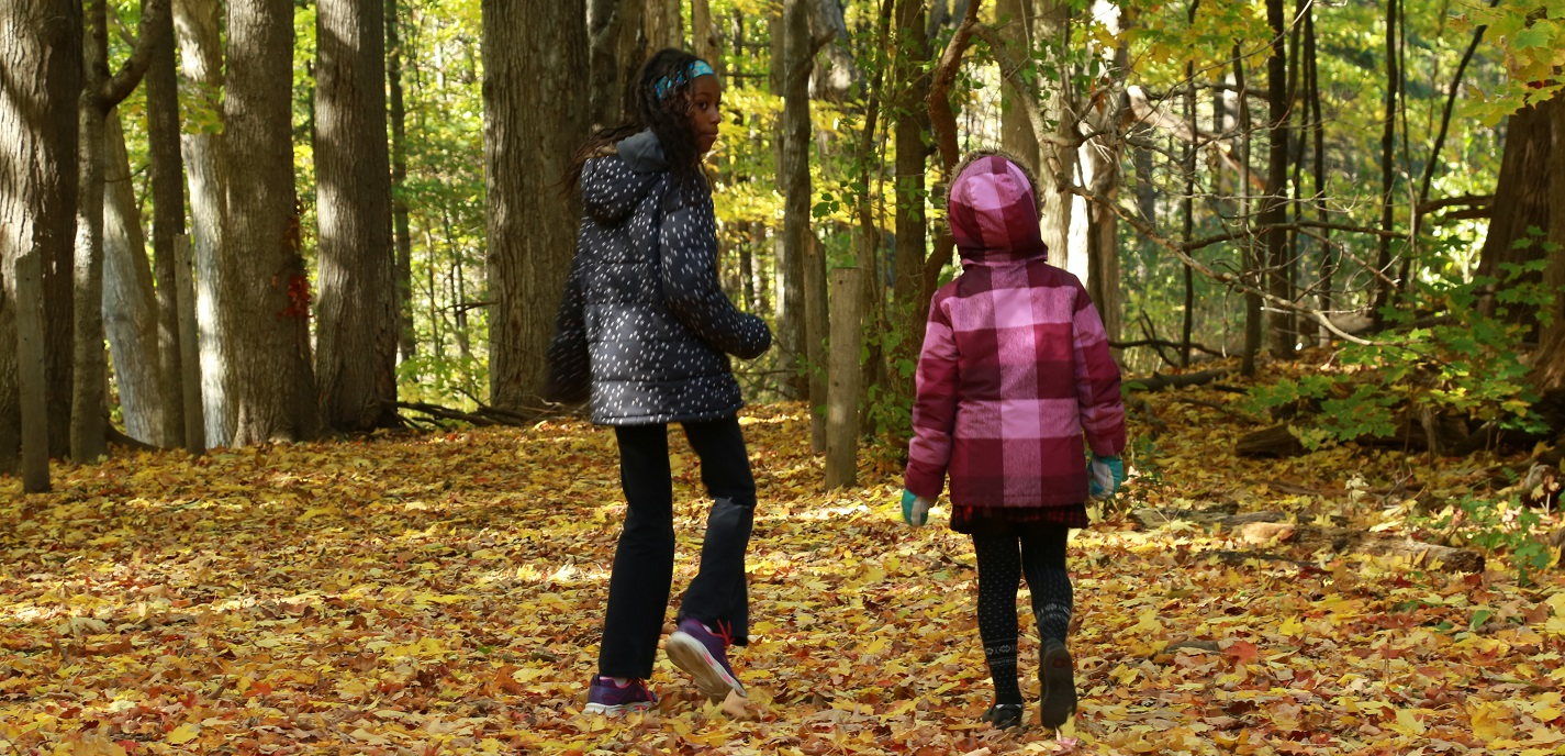 primary students take part in Nature School program at Kortright Centre