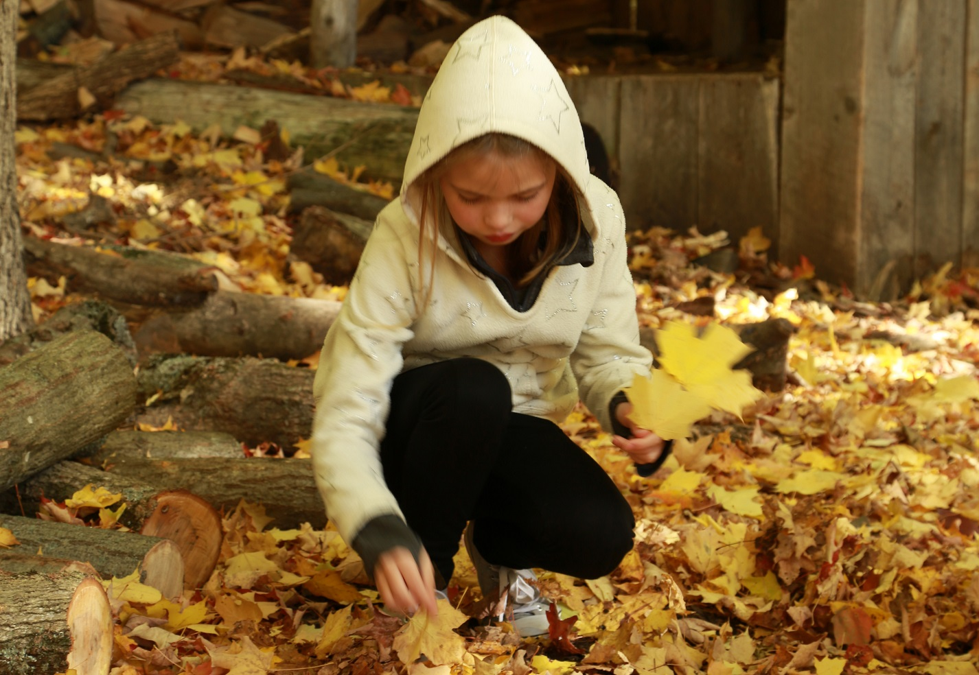 young student takes part in The Nature School PA day camp at Claireville Conservation Area