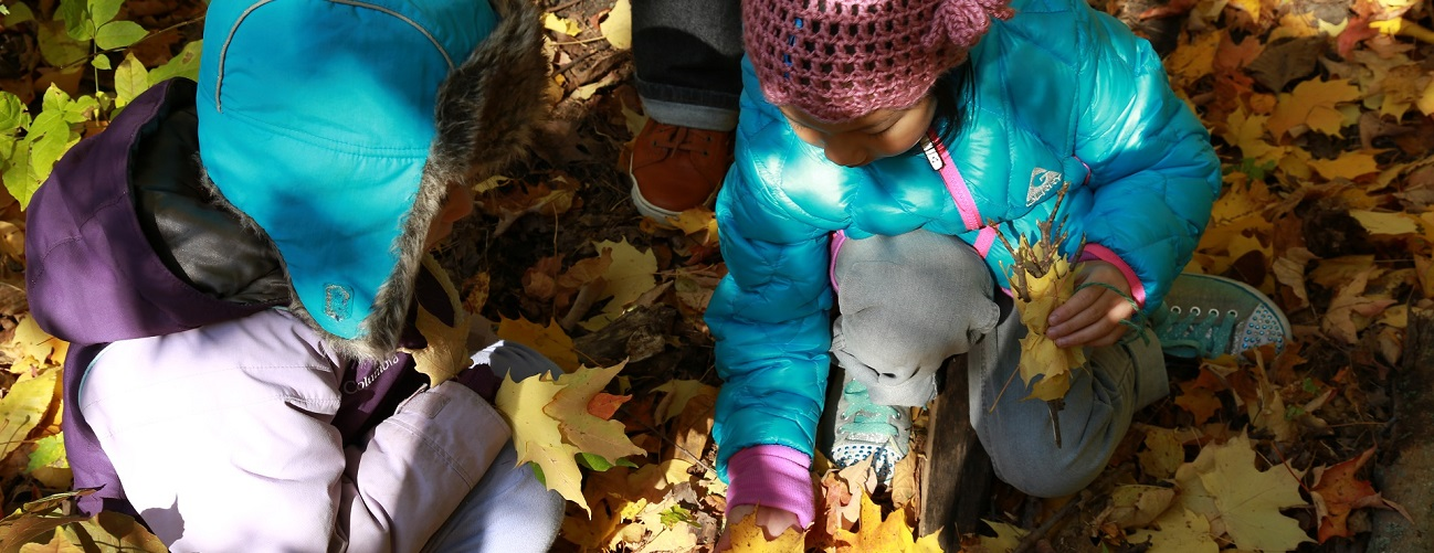 children enjoy outdoor activities while attending The Nature School at Kortright